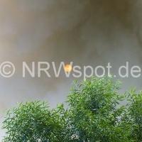 0009-feuer-hagen-haspe-07-07-2012-an-der-kohlenbahn