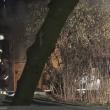 0005-laubenbrand-malmkestr