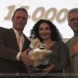 00033-motorraeder-dortmund-2013