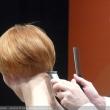 0029-top-hair-2013-brockmann-knoedler