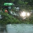0006-unwetter-hagen-ueberschwemmung-baum-auf-auto